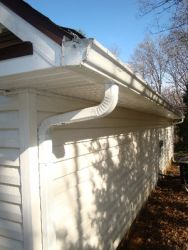 Most all the grime and mold will release from Gutters